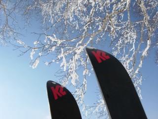 愛機、K2 ワークスティンクス