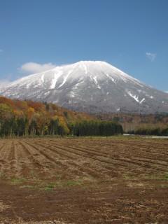 羊蹄山2010-10-29